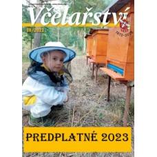 Lipa malolistá (Tilia cordata) - dvojročná sadenica
